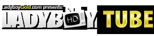 Ladyboy Tube logo